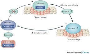 Figure 2 Pathogenicity Of Inborn Errors Of Metabolism That