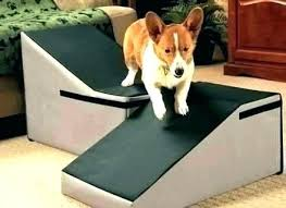 dog ramps for steep stairs royal pet ramp indoor couch miscellany a and build small angled