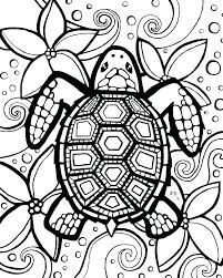 Baby Turtle Coloring Pages Of Turtles Cute Sea Acnee