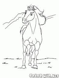 Cavallo Immagini E Disegni Da Stampare Best Of Spirit Cavallo