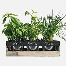 Glamorous 20 Herb Planter Indoor Decorating Design Of Best 25 .