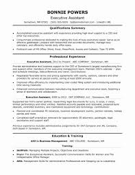 Executive Assistant Sample Resume New Great Resume Samples For
