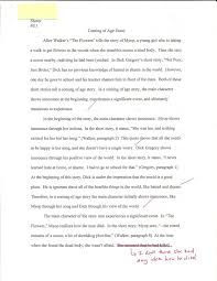 the five paragraph essay emily scherer s teaching portfolio analytical comparison essay page 2
