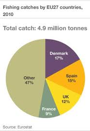 Euro Mps To Hold Crucial Vote On Fishing Reform Bbc News