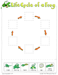 Frog Preschool Printables additionally Life Cycle of a Frog Worksheet   Itsy Bitsy Fun furthermore Frog Preschool Printables moreover Free Printable Mazes for Kids   All Kids  work likewise  as well Frog Activity Sheet   Itsy Bitsy Frog Book besides Best 25  Frog life cycles ideas on Pinterest   Spring cycle together with Life Cycle of a Frog Pictures Worksheet   Turtle Diary in addition  besides 23 best Frog Life Cycle images on Pinterest   Frog life cycles likewise FREE Preschool Frog Worksheets Pack   Free Homeschool Deals ©. on frog free printable kindergarten worksheets
