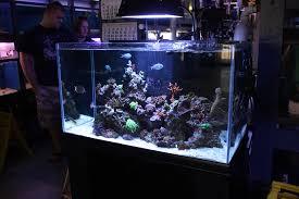 office aquarium. oceanic illuminata rimless reef aquarium office