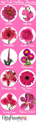 list of pink flowers images flower decoration design types with birthday ideas