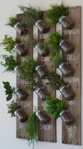 Small Picture The 25 best Herb garden indoor ideas on Pinterest Indoor herbs