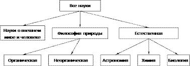 Реферат Классификация наук Дифференциация и интеграция наук  Классификация наук по О Конту