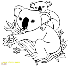 hurry koala colouring pages coloring book