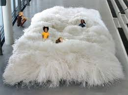 From road kill rugs to this extreme shag pile, make your home unique with  these crazy designs.