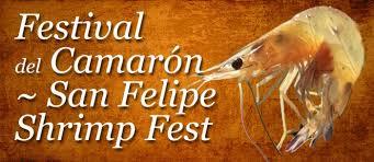 San Felipe Shrimp Festival Discover Baja Travel Club
