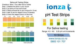 Ph Testing In The Body - Too Acidic And What It Means?