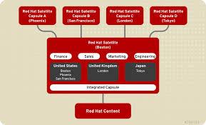 Red Hat Organization Chart 2 3 Organizational Structures Red Hat Satellite 6 1 Red