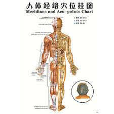 Acupuncture Chart Poster Details About 7pcs English Acupuncture Meridian Acupressure Points Posters Chart Wall Map Un