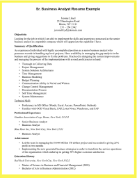 Business Analyst Resume Sample   sales manager resume objective happytom co