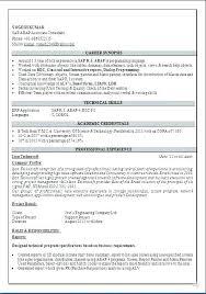 Sap Basis Experience Resume Sap Basis Resume Sap Basis Resume 2