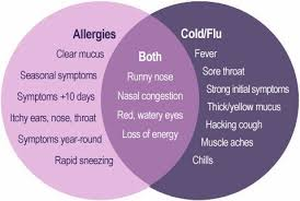 Cold Vs Allergy Symptoms Chart Allergies Cold Or The Flu Lite Rock 105 Brian Demay