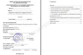 Текстовый отчет по производственной практике медсестры в терапии Ветеринария на ферме отчет по практике otherreferats allbest