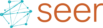 Welcome To Seer Interactive Where Data Meets Desire