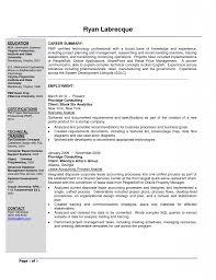 Sample Resume Business Analyst Resume Templates Samples