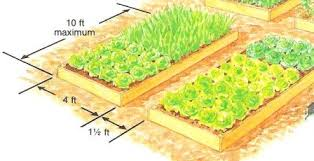 Small Picture Raised Garden Design Vegetable Bed Design Raised Bed Design and