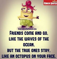 Photo Quotes About Friendship Funny Friendship Quotes Friends come and go Memions 58