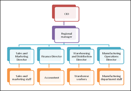 Implementation Of Information Technology In An Organisation