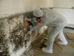 Well Mildew sure is no fun. We deal with it on a daily basis here in Miami.