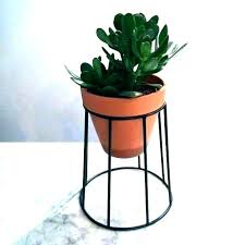 large indoor planters pots for indoor plants indoor plant pots large indoor plant pots indoor planters large indoor