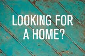 looking for a home. Simple For Lookingforahome In Looking For A Home