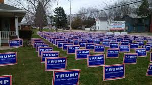 Image result for trump lawn sign