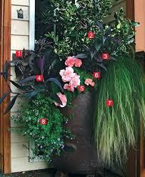 best plants for patio pots stylish shady containers best plants for patio pots in shade patio best plants for patio