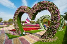 floral garden. Al Ain Paradise Park: The Most \u0027Floral\u0027 Garden In World Floral
