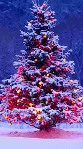 christmas tree background iphone 6. Interesting Background Snowy Christmas Tree IPhone 6 Plus Wallpaper Ideas For 2014 2014  Christmas Tree IPhone 6 Plus Wallpaper Intended Tree Background Iphone O
