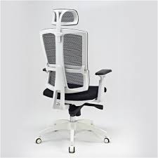 office chair back. Office Chair With Premium Mesh Back