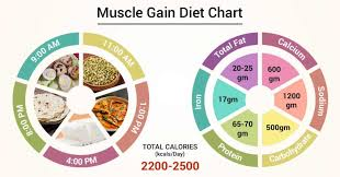 Diet Chart For Muscle Building Diet Chart For Muscle Gain Patient Muscle Gain Diet Chart