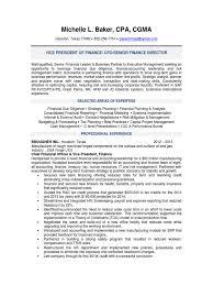 Cfo Resumes Best Cfo Resumes Enderrealtyparkco 16