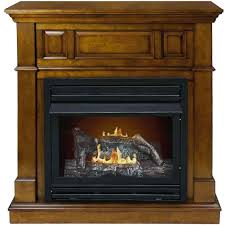 propane fireplaces and stoves fireplace inserts efficiency ventless logs