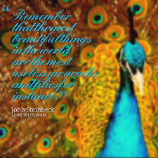 Peacock Beauty Quotes Best of Top 24 Quotes About The Beauty For You Life Quotes For Teens
