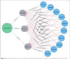 Graph Databases Figure 1 From Representing And Querying Disease Networks