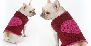 Free Crochet Dog Sweater Patterns Enchanting Romantic Crocheted Dog Sweater [FREE Crochet Pattern]