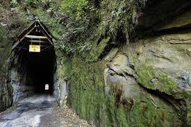 Image result for Forgotten World Highway, New Zealand