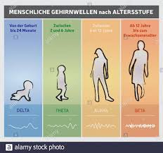 Human Brain Waves By Age Chart Diagram People Silhouettes