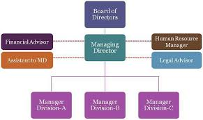 Small Hotel Organizational Online Charts Collection