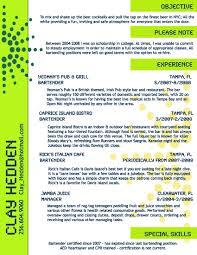 Bartending Resume Template Creative Bartender Resume Template Httpwwwresumecareer 13