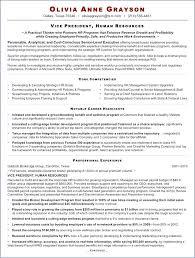 Hr Resume Objectives Sample Hr Resumes For Hr Executive Elegant