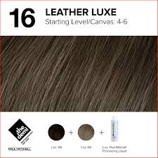 Top Level 6 Hair Color Chart Picture Of Hair Color Ideas