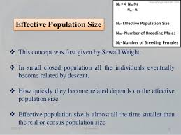 effective population size definition effective population size and its applications in plant breeding