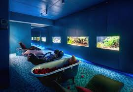 google office video. google office in zurich an underwater nap room for my dream home video e